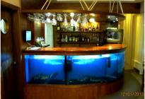 Барная стойка - торговый аквариум для передержки живой рыбы в ресторане