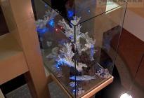 Сухая композиция - достойная замена аквариуму. Расположена в межэтажном пространстве.