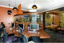 Аквариум зонирует пространство офиса. Фото А. Авдеенко.